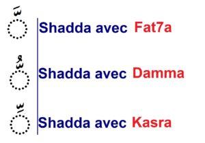 présentation de la shadda